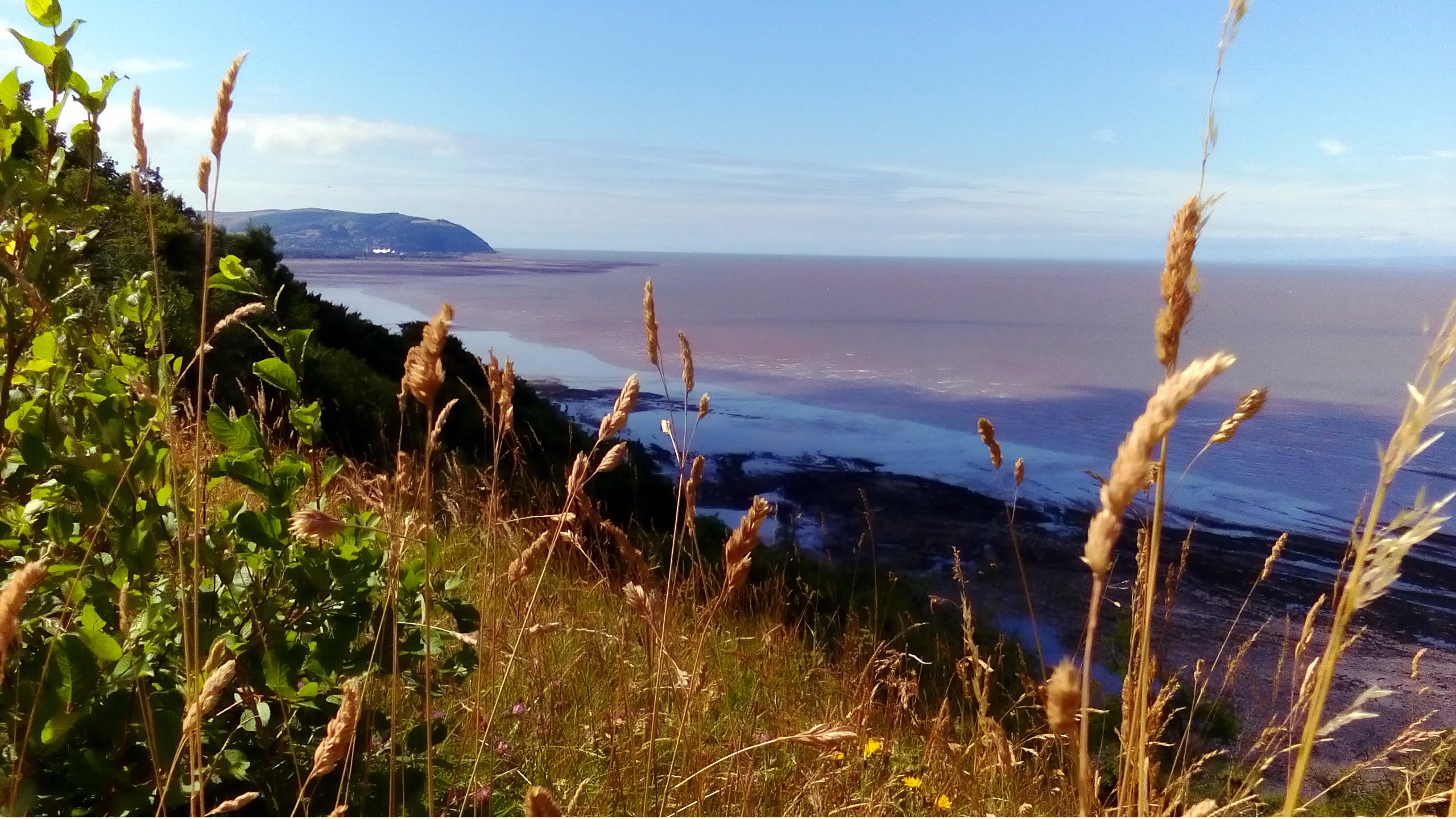 Minehead from West Somerset Coastal Path
